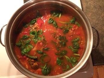 veg-soup2